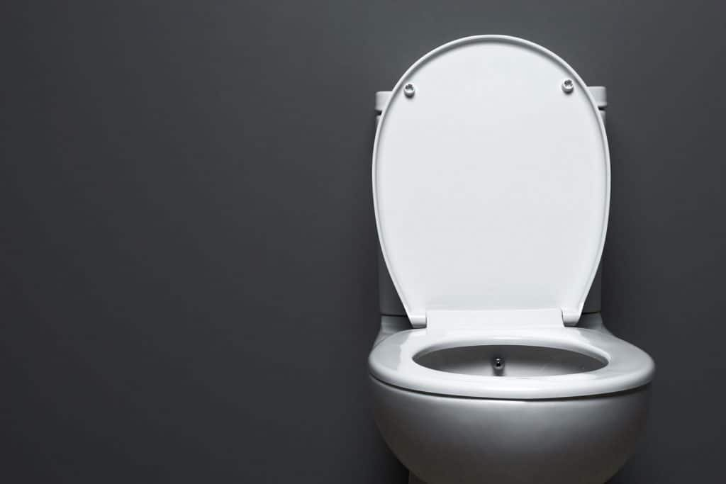 A toilet bowl placed on a gray background