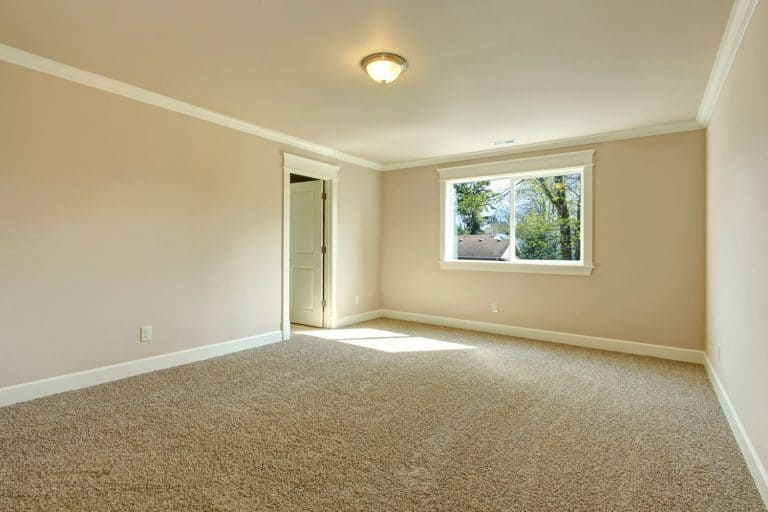 Bright empty room with one window, beige carpet floor and ivory walls, Gap Between Carpet And Baseboard - What To Do?