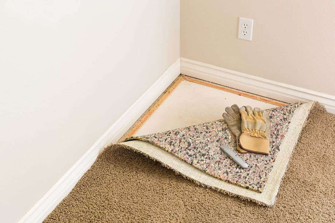 Construction gloves and utility knife on pulled back carpet and pad in room