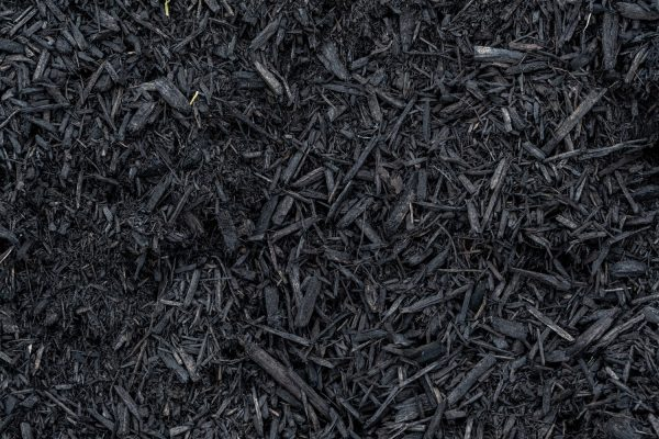 Read more about the article What Color Mulch For A White House?