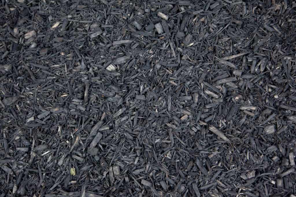 Gray mulch made out of tree bark