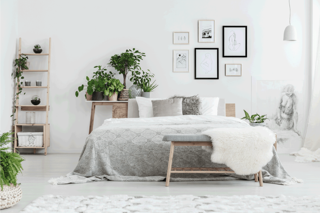 Handmade drawings in frames hanging on the wall in white bedroom with potted plants and wooden decorative ladder