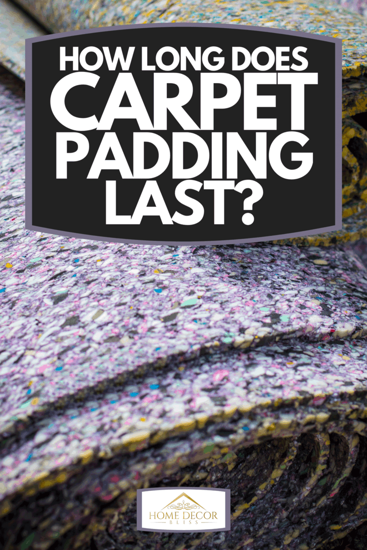 A carpet padding up close in roll, How Long Does Carpet Padding Last?