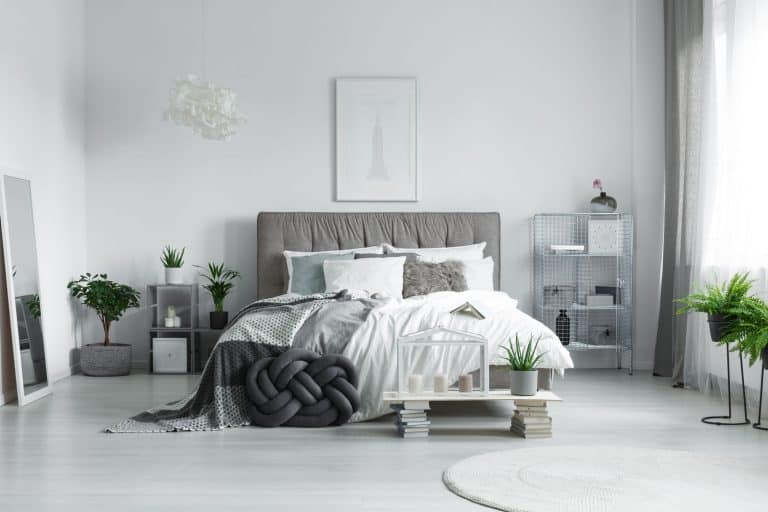 Many pillows lying on a king-size bed in a bedroom filled with plants with light colored paint wall, Should Bedroom Walls Be Light or Dark?
