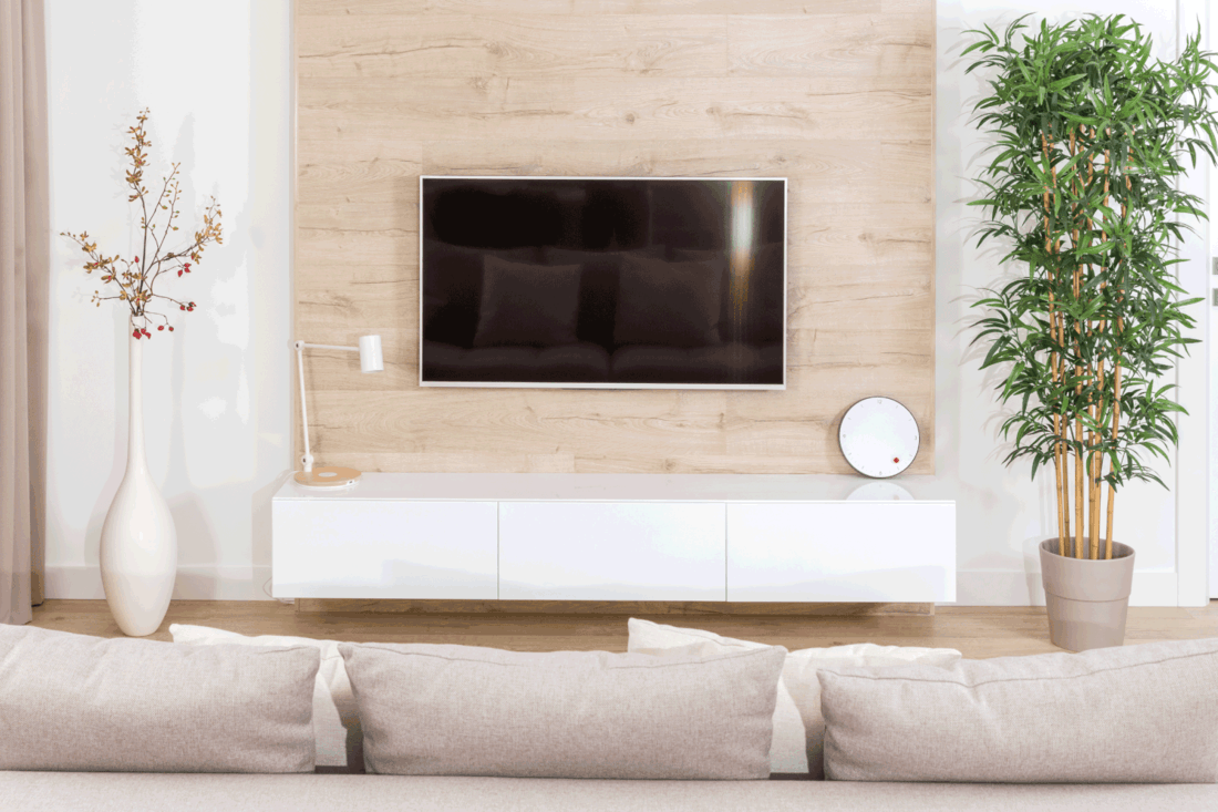 Modern living room with tv equipment and sofa, simplicity is key