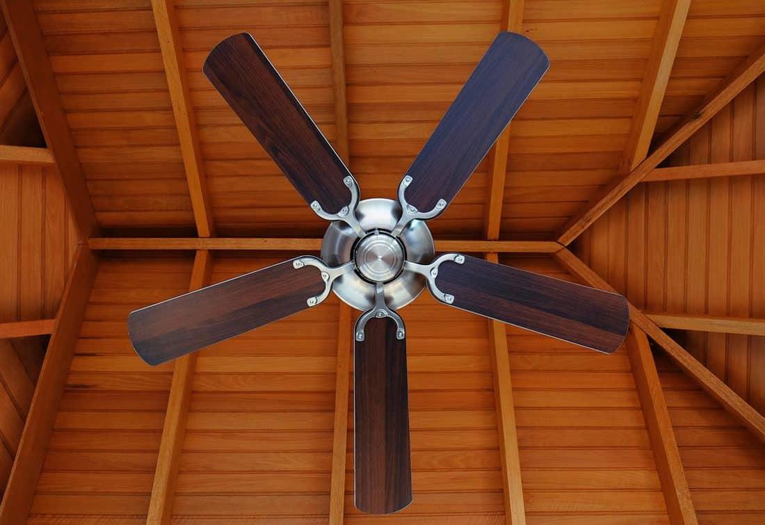 Photo of indoor ceiling fan