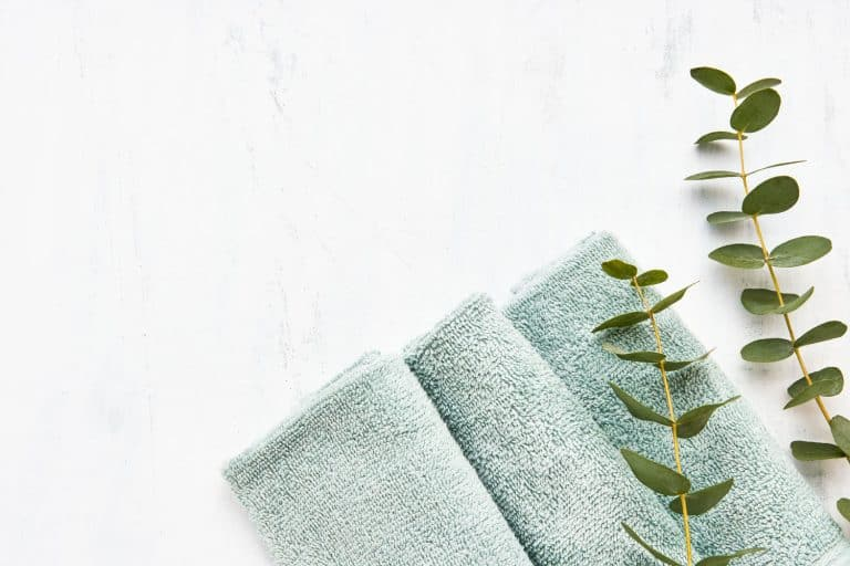Rolled fluffy bathroom towel and green eucalyptus branch on white background, What Is The Best Color For Bathroom Towels?