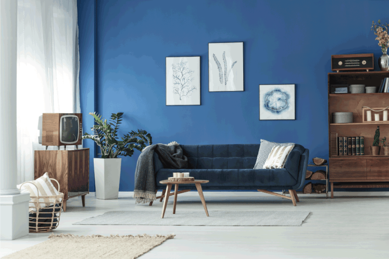 living room in an apartment with blue walls, blue couch, wooden furnitures. 15 Beautiful Blue Couch Living Room Ideas