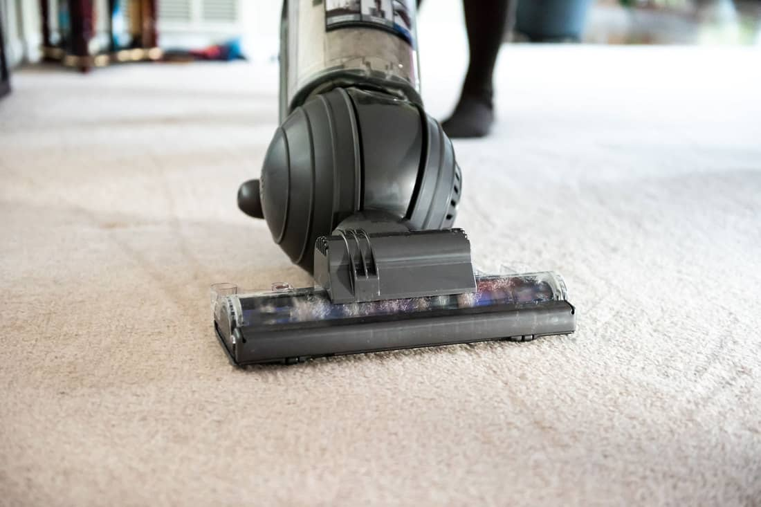 A ball vacuum cleaning cleaning its way through the carpet