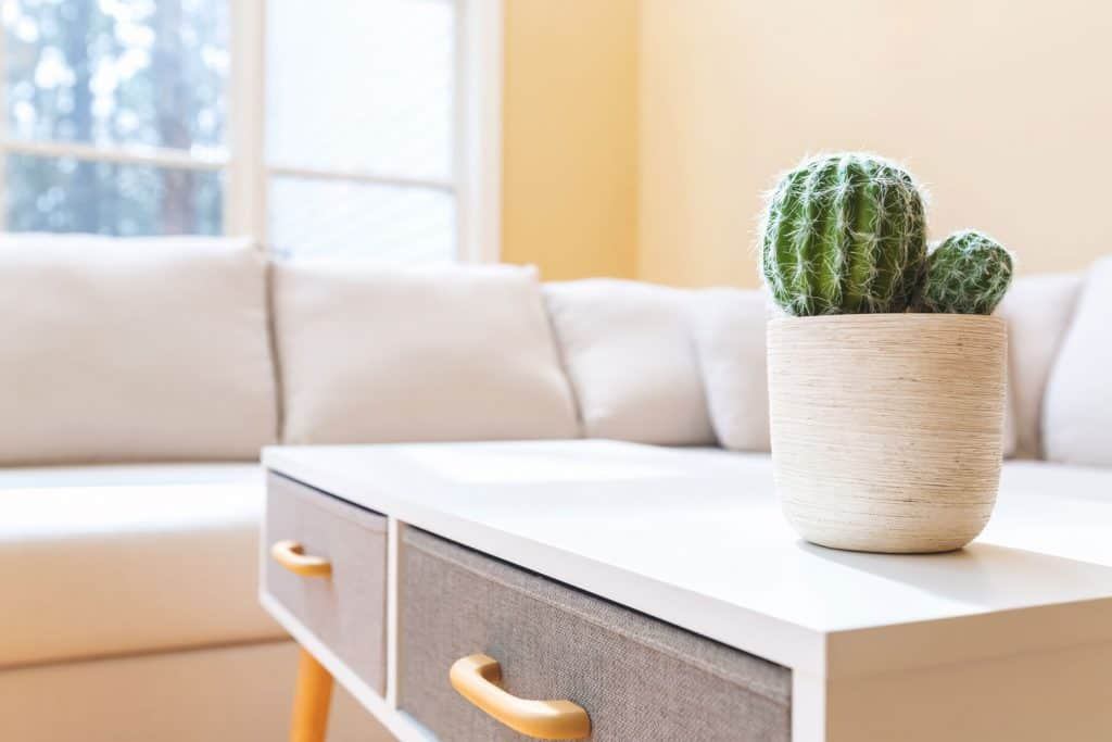 A white coffee table with a cactus on top inside a light beige living room