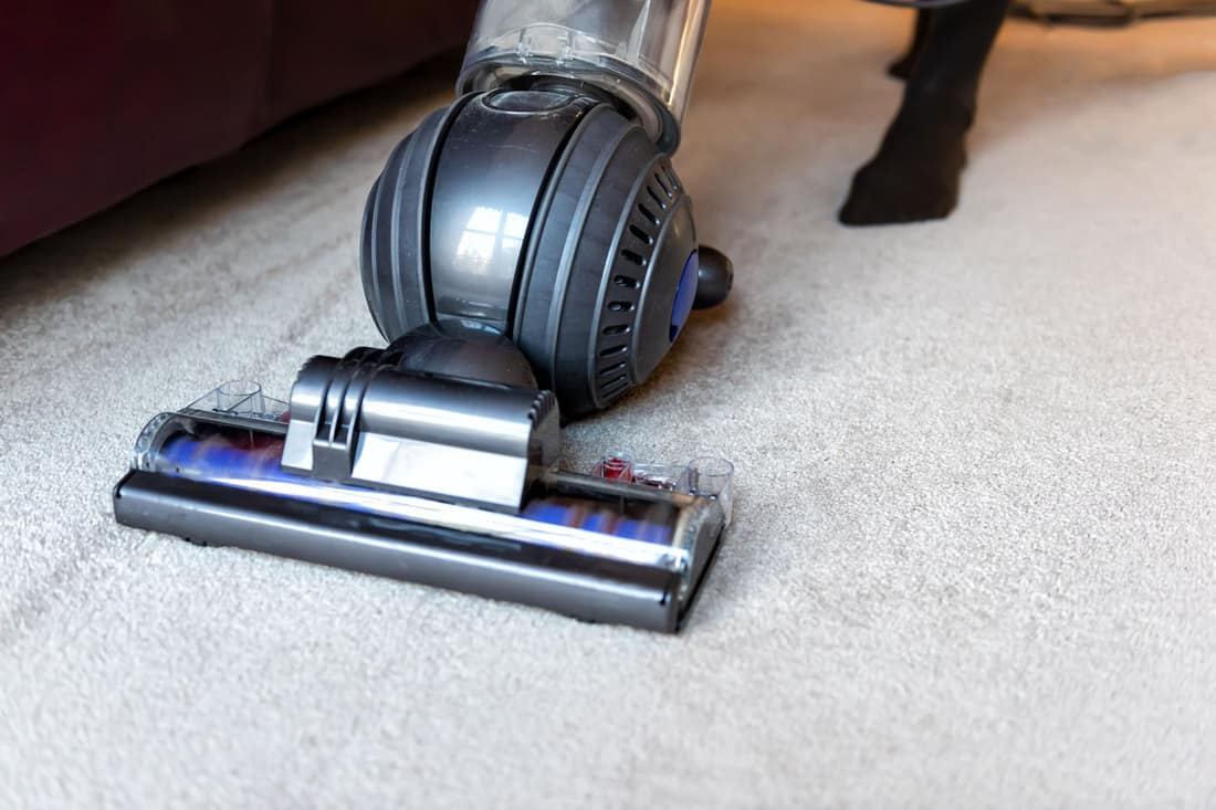 A woman using a ball vacuum cleaner to clean her carpet