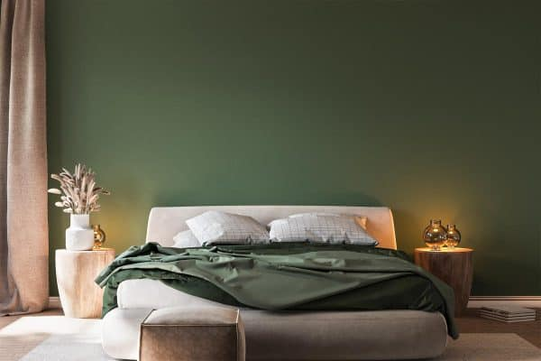 Read more about the article 11 Green Bedroom Color Scheme Ideas
