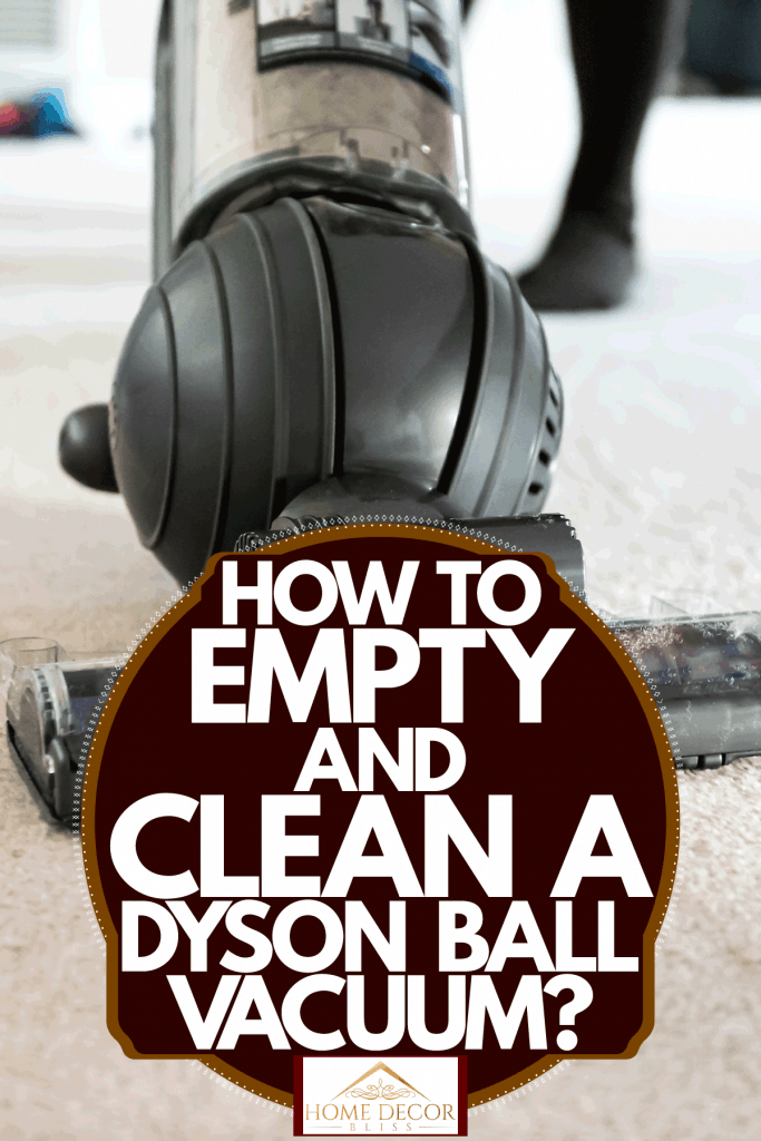 A ball vacuum cleaning cleaning its way through the carpet, How To Empty And Clean A Dyson Ball Vacuum
