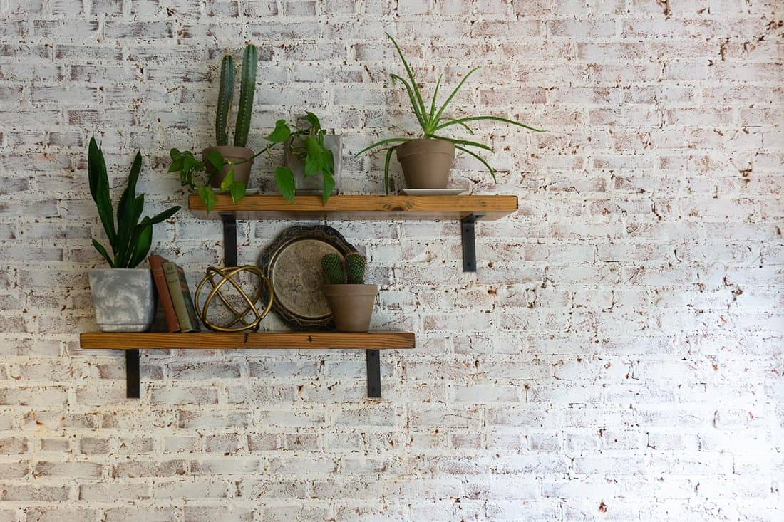 Modern stylish white brick wall with shelves and plants on them