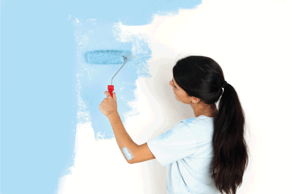 Read more about the article Sherwin Williams Emerald Vs Duration: Which To Choose?
