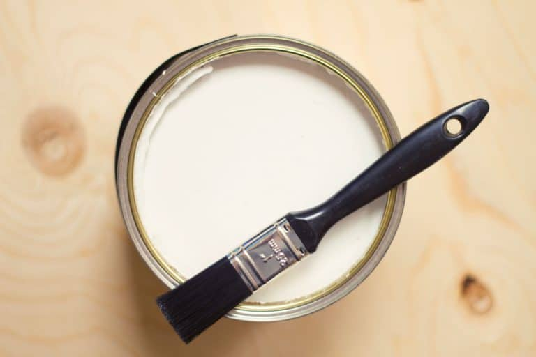A can of primer paint and a paint brush on top, Does Benjamin Moore Paint Need Primer?